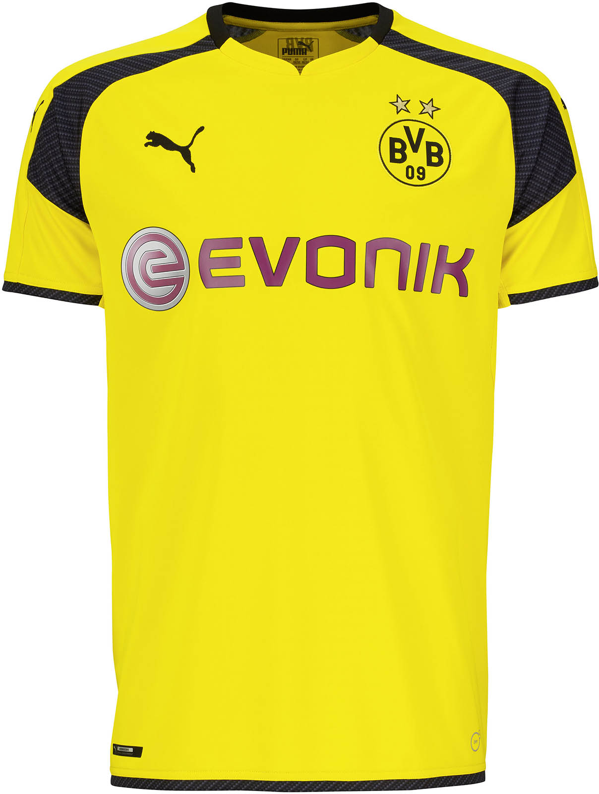 bvb dortmund champions league