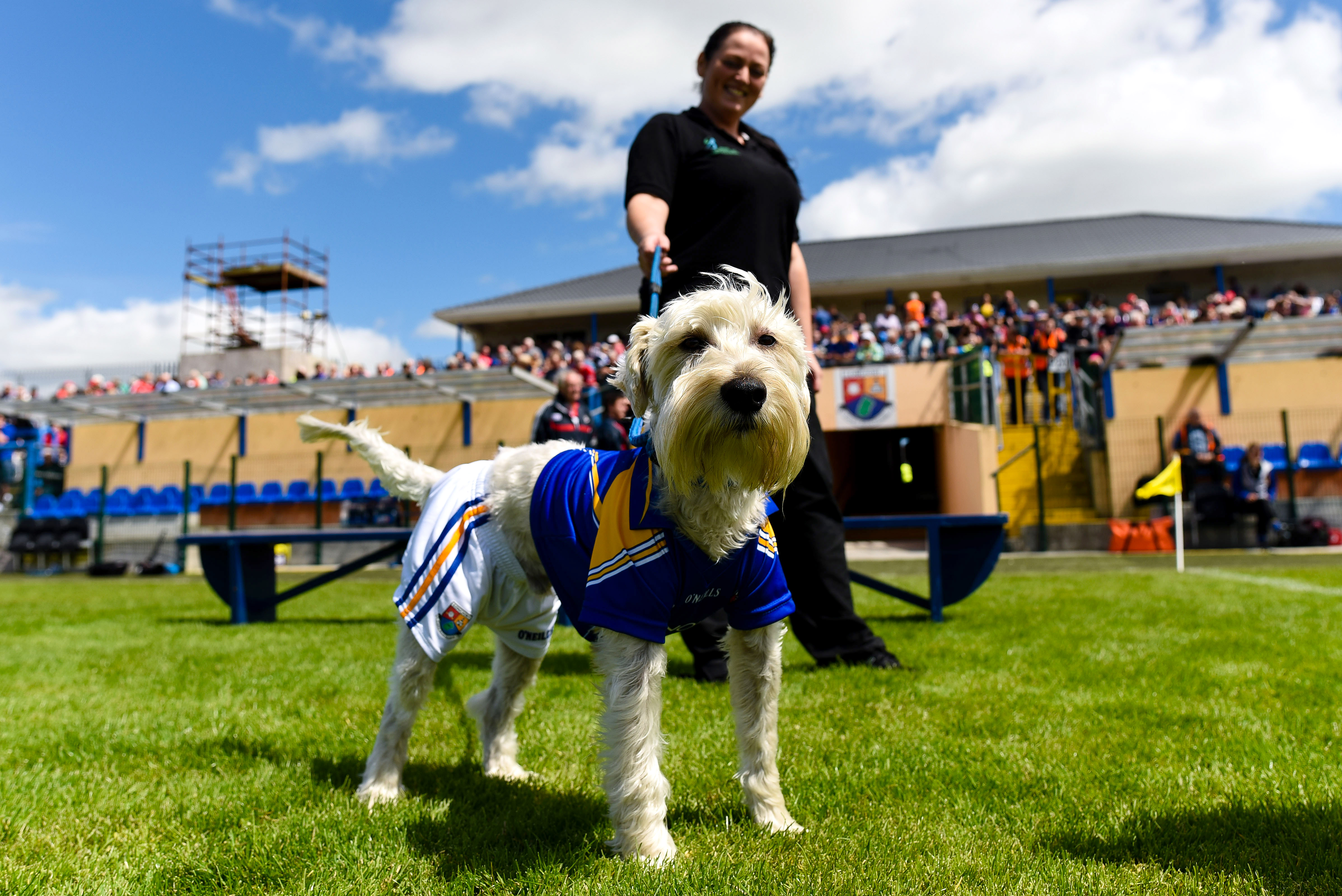 All-Ireland Senior Football Championship Qualifiers Round 3B, Glennon Brothers Pearse Park, Longford 16/7/2016 Longford vs Cork Miranda Moran with Teddy before the game Mandatory Credit ©INPHO/Tom Beary