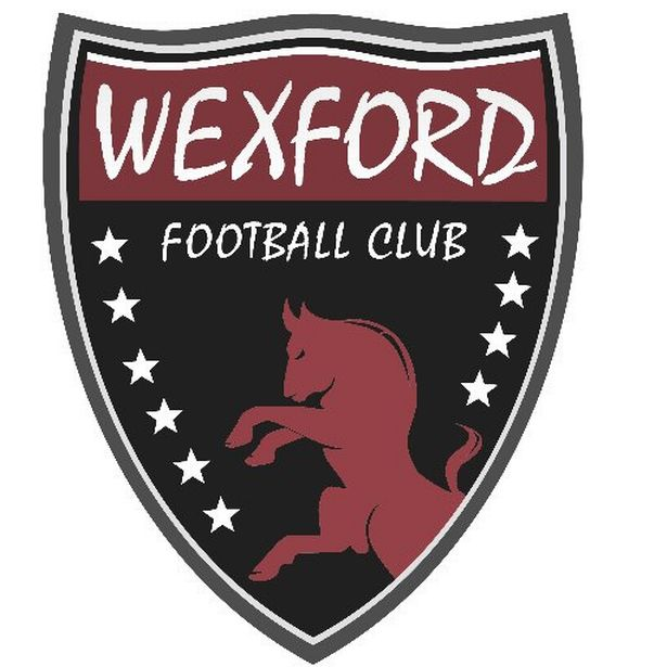 https://m0.sportsjoe.ie/wp-content/uploads/2017/02/04132046/Wexford-football-club.jpg