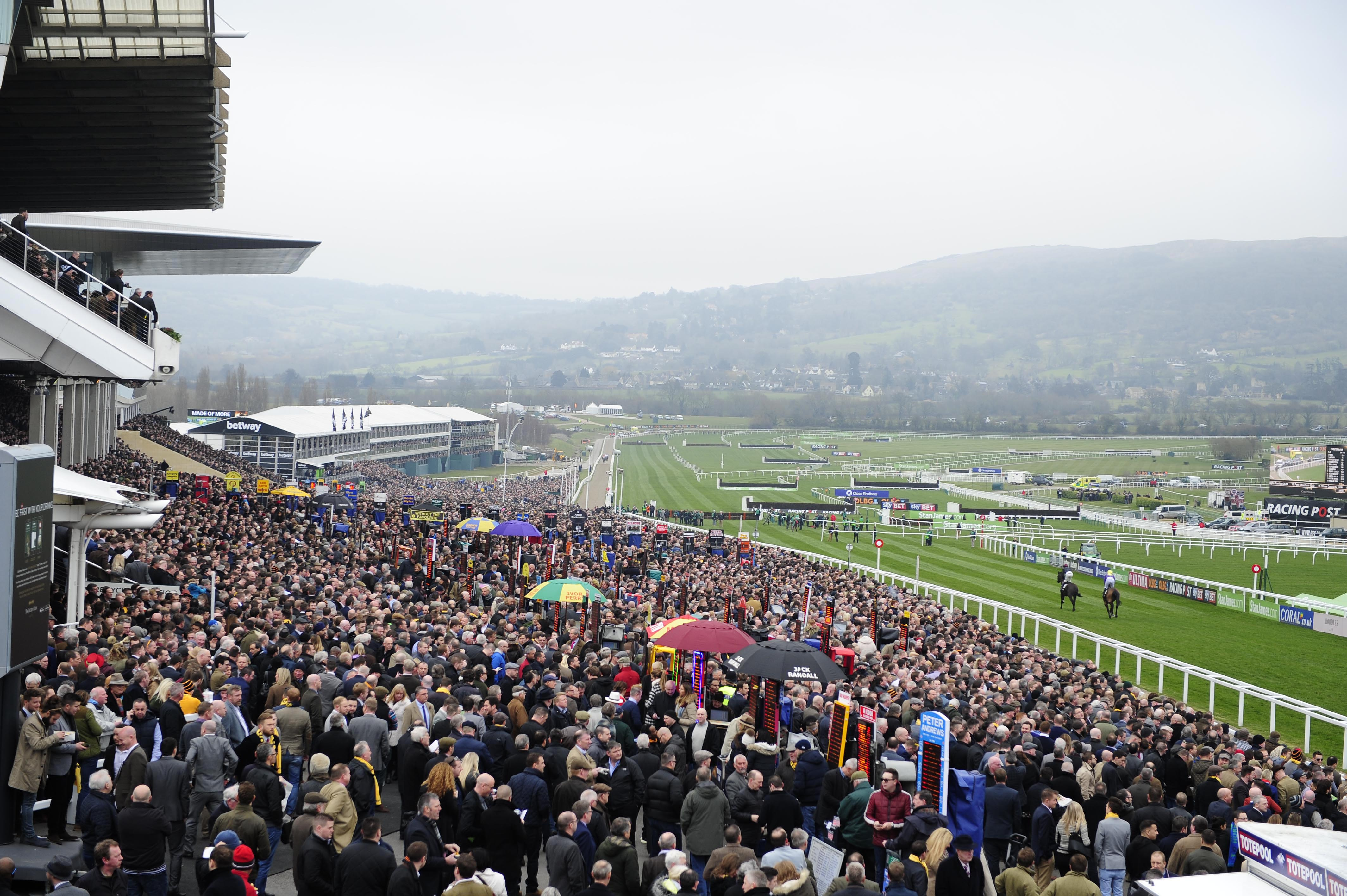 Cheltenham Day Two updates: Special Tiara upsets odds to win Champion Chase